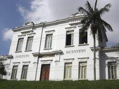 Fundado em 1901 como Instituto Serunterápico do Estado de São Paulo, o Instituto Butantan não só é um importante ponto turístico da capital, com atividades para pessoas de todas as idades, como também é um dos maiores centros de pesquisa biomédica do mundo, produzindo mais de 80% do total de soros e vacinas consumidos no Brasil.