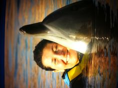 me and the dolphin