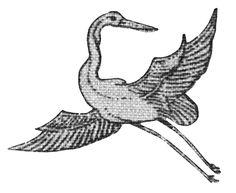 #yearofpattern florence broadhurst, crane