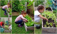 #Enquête nationale sur les pratiques de #jardinage dans les #écoles http://www.pariscotejardin.fr/2015/11/enquete-nationale-sur-les-pratiques-de-jardinage-dans-les-ecoles/