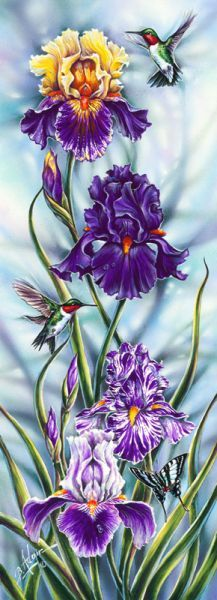 """Georgia's Favorites"" (Iris, Hummer, Butterfly)"