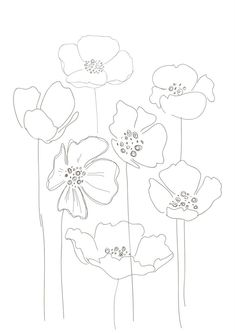 Line Drawing Poppy Flower Line Drawing Poppy Flower. Line Drawing Poppy Flower. Simple Poppy Drawing Simple Poppy Drawing Keywords in poppy flower drawing Poppies Poppy Drawing, Floral Drawing, Line Drawing, Art Floral, Silk Painting, Painting & Drawing, Watercolor Flowers, Watercolor Art, Poppies Art