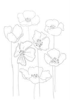 draw poppies | poppy drawing