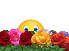 [gallery columns& type& link& ids& Smiley Emoji, Beautiful Love Pictures, Cute Love Gif, Flower Poem, Funny Minion Pictures, Emoji Pictures, Funny Emoji Faces, Smiley Happy, Cat Litter Mat