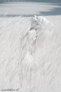 pinterest.com/fra411 #withe - White Inspiration