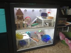 DIY hamster cage made from Ikea unit.  Check out how easy it is to make. Ikea Hacks are a fab way to give your pets huge cages at low prices ♥♥ LED lights are great to making watching your pets easier. Check out thehamsterhut.com for lots of creative ideas for toys and boredom breakers.