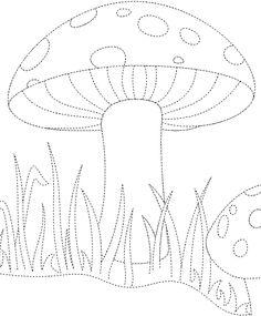 Mushroom nestled in Grass