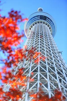 Tokyo Sky Tree | Japan (by Tomobil) Amazing Architecture, Art And Architecture, Architecture Details, Sea Of Japan, Go To Japan, Places Around The World, Around The Worlds, Landscape Photography, Photography Composition