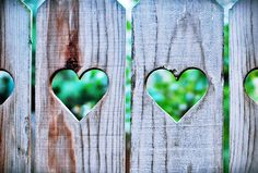Heart cut outs on a picket fence - a little view in to the secret garden : ) I Love Heart, Happy Heart, My Heart, Heart In Nature, Heart Art, Valentine Love, Valentines Day, All You Need Is Love, My Love