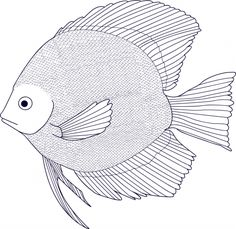 Black and White Fish coloring page for teens and adults. These free coloring pages are advanced enough for even the most sophisticated of colorers.