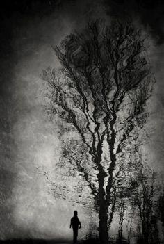 winter dream by Anja Buehrer