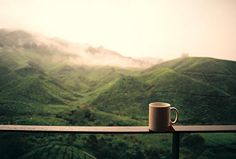 Tea with a view : Boh Visitors Centre, Cameron Highlands