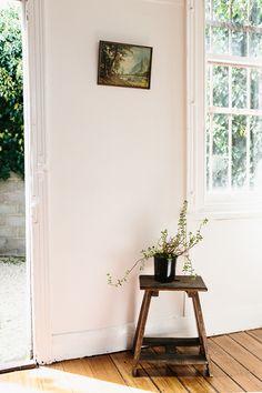 warm minimalism // goldie & co. // home decor // indoor plant // sunlight  // sfgirlbybay