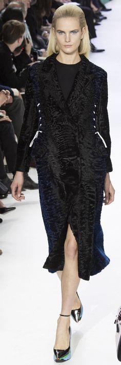 Christian Dior Ready To Wear Autumn 2014