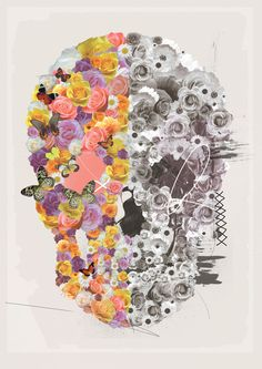 skull, roses, bloom, color, poster