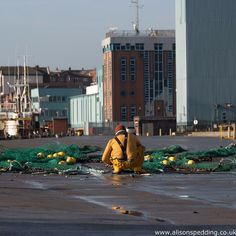 North Shields Fish Quay. http://speddinga.wordpress.com/2014/10/17/its-all-a-bit-fishy/