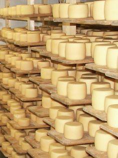Käse (Weichkäse, Halbhartkäse im Stil eines Tête de Moine und Hartkäse nach Greyerzer Art ), der in einem Dorf in Transkarpatien nach Schweizer Rezepturen in einer Käserei hergestellt  ist