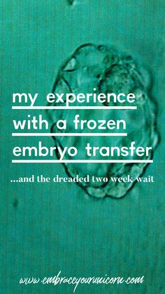 I share the details of our FET and what the past two weeks have been like for us. This post contains sensitive, vulnerable information. Thank you for joining our story. Frozen Embryo Transfer Timeline, Fet Ivf, Ivf Preparation, Ivf Timeline, Embryo Implantation, 2 Week Wait, Hard Truth, Waiting