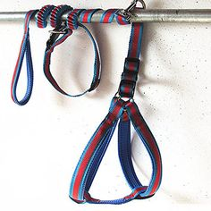 Quno Nylon Non Pull Dog Pet Leash Training Harness and Adjustable Lead with Collar Set Red and Blue Large -- Learn more by visiting the image link.
