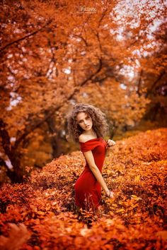 autumn in red::