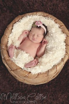 Melissa Calise Photography (Newborn Baby Girl Photoshoot Ideas)