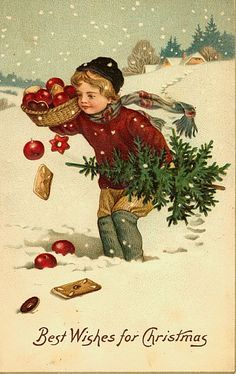 Vintage Christmas Postcards ~ Victoriana Boy with Tree and Apple Basket
