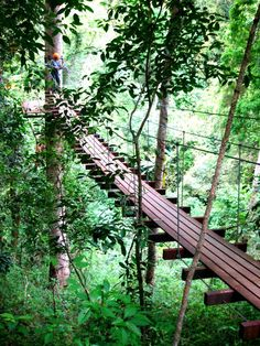 Globetrotter: #ChiangMai Outdoor Activities, #Thailand.   For more pic : https://www.facebook.com/lilyrianitravelholic