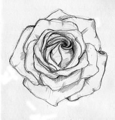 how to draw a open rose tattoo design - Google Search