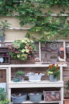 準備は万端か?の画像 | Nora レポート ~ワンランク上の庭をめざして~
