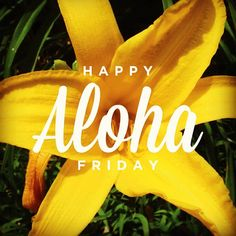 Happy Aloha Friday All