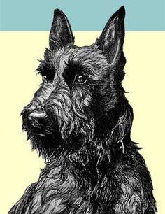 I just love scottie dogs!
