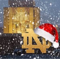 Nd Football, Cubs Baseball, Notre Dame Football, College Football, Irish Fans, Go Irish, Luck Of The Irish, Irish Christmas, Merry Christmas