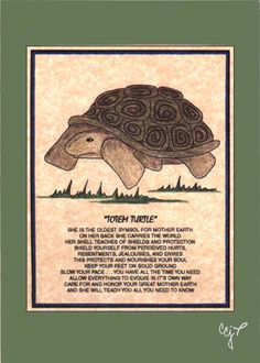 This is a reproduction of an original colored pencil drawing by me, carolee carpenter jandreau. (I do all the drawing, painting, embellishing, Turtle Spirit Animal, Animal Spirit Guides, Turtle Quotes, Russian Tortoise, Old Symbols, Tortoise Turtle, Power Animal, Turtle Love, Tortoises