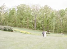 Barren Ridge Vineyards in Fishersville, VA (near Charlottesville).  Kodak Portra 400.  Contax 645