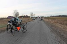 One man was injured and a horse killed when a pickup truck and horse-drawn buggy collided on Fitzner Road around 7:30 Thursday morning.