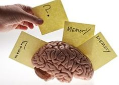 Memory+ is a supplement designed to enhance and sharpen memory and ultimately prevent memory loss.