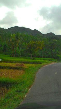 Gunung Nganten Bamban - Kumbo