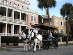 Charleston Essentials: Explore Local Culture >> http://www.frontdoor.com/city-guide/charleston-sc-usa/places-to-go-and-things-to-do-in-charleston/56455/p2?soc=dhpp