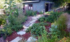 Preparing for Your Fall Garden