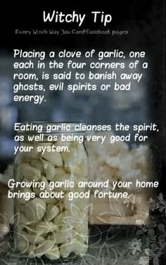 Witchy tip - Garlic - Pinned by The Mystic's Emporium on Etsy Wiccan Witch, Magick Spells, Healing Spells, Wiccan Magic, Green Witchcraft, Wicca Witchcraft, Every Witch Way, Witchcraft For Beginners, Under Your Spell