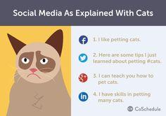 Social media explained using cats. - i like cats too
