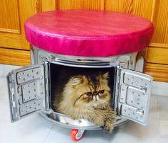 Bombo de lavadora convertido en puff gatera por Patio Almanzora. Quién fuera gato.... VENDIDO