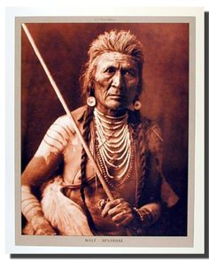 Native American Indians were basically very peace loving persons but when they confronted with opposition they were the fiercest of fighters. The Indian Warrior culture was very prevalent amongst the Native Americans. Indian Warriors were trained from a very young age and their classes are the most respected class of the society. Another brave soul from the Indian Warrior Native Americans was that of Crazy Horse.