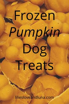 Make these simple frozen peanut butter and pumpkin dog treats for your dog this summer.