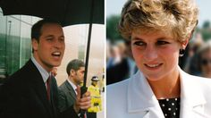 Candid pictures of Princess Diana, Prince William, Queen Elizabeth captured in royal family fan's book