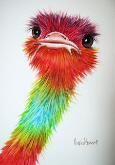 This is an original watercolour painting of a colourful ostrich. The background is white.