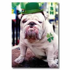 happy St. Pattys Day