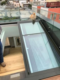 The only Passive House certified glass roof and facade systems available in North America, provided by 475 High Performance Building Supply. Rooftop Terrace Design, Terrace Ideas, Rooftop Deck, Rooftop Garden, Roof Access Hatch, Passive House, Glass Roof, Roof Top, House Roof