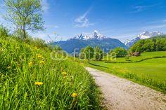 Zdjęcia na płótnie, fototapety na wymiar, obrazy na ścianę : Idyllic landscape in the Alps with meadows and flowers