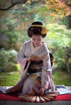 "geisha-kai: ""November maiko Toshisumi of Miyagawacho dancing with two folding fans by Kyoto Flowertourism o Japanese Costume, Japanese Kimono, Japanese Girl, Geisha Japan, Geisha Art, Japan Tag, Japan Kawaii, Memoirs Of A Geisha, Art Japonais"
